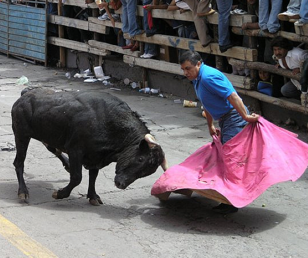One Man Dies and 24 are Injured in Bullfighting Festival